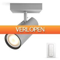 Coolblue.nl 3: Philips Hue Buratto Spot grijs met Dimmer