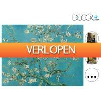 iBOOD Home & Living: Decorshop Canvas Hollandse Meesters