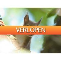 ZoWeg.nl: 3 dagen Drenthe halfpension