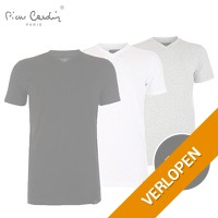 4 Pack  Pierre Cardin T-shirts