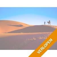 9-daagse rondreis Marokko van Marrakech, door de Sahara naar Fez