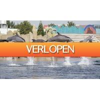 ActieVandeDag.nl 2: Dagje Dolfinarium Harderwijk