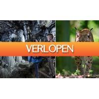 ActieVandeDag.nl 2: Grotten van Han en Wildpark