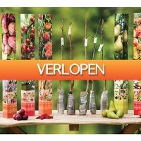 Koopjedeal.nl 1: 5 winterharde fruitbomen