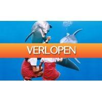 ActievandeDag.nl 1: Dagje Boudewijn Seapark Brugge