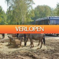 D-deals.nl: Weekend of midweek Vakantiepark Beekse Bergen