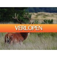 Traveldeal.nl: Weekendje weg nabij Arnhem en de Hoge Veluwe