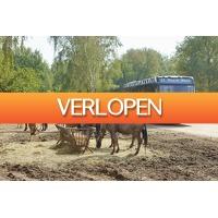 Cheap.nl: Weekend of midweek Vakantiepark Beekse Bergen