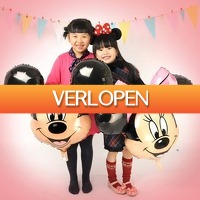 Gadgetsgift.nl: Minnie Mouse folieballon