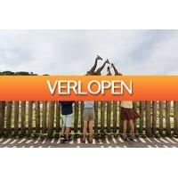 VakantieVeilingen: Veiling: Dag op safari in de Beekse Bergen (2 personen)