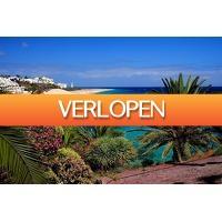 Cheap.nl: 6, 8, 12 of 15 dagen Fuerteventura