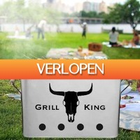 MegaGadgets: Grill King barbecue