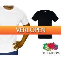 Telegraaf Aanbiedingen: 12-pack Fruit of the Loom T-shirts