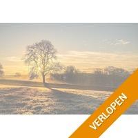 4 dagen in de heuvels van Zuid-Limburg