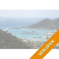 Luxe cruise door het Caribische gebied