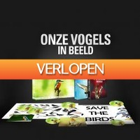 One Day Only: DVD-box: Onze vogels in beeld