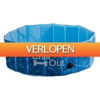 Plein.nl: Afp Chill Out-Splash and fun dog pool
