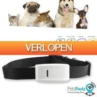 Wilpe.com - Elektra: GpsBird PetsFinds GPS tracker