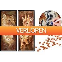 VoucherVandaag.nl: Sepia Diamond painting schilderijen