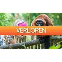 ActieVandeDag.nl 2: Dagje naar Apenheul