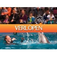 Tripper Tickets: Beleef winterpret bij Boudewijn Seapark in Brugge!