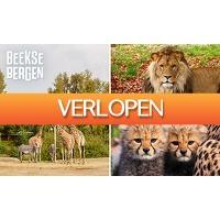 SocialDeal.nl: Entree Safaripark Beekse Bergen + warme drank