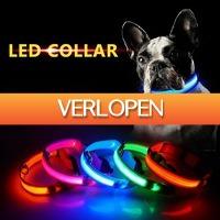 ClickToBuy.nl: LED halsband voor de hond