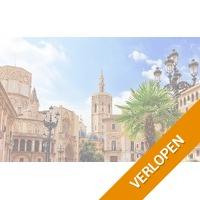 Stad en strand in Valencia