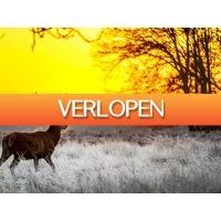 ZoWeg.nl: 3 dagen Veluwe HP