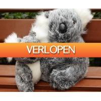 CheckDieDeal.nl: Koala knuffelbeer  - Steun een goed doel!