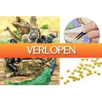 VoucherVandaag.nl: Diamond painting wilde dieren
