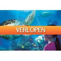 Tripper Tickets: Ontdek de rijke onderwaterwereld bij SEA LIFE Blankenberge!