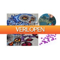 ActieVandeDag.nl 2: Voucher diamond painting