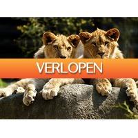 Tripper Tickets: Entreeticket voor Dierenpark Parijs