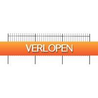 VidaXL.nl: vidaXL tuinhek met speren bovenkant