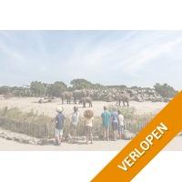 Midweek of weekend Vakantiepark Dierenbos