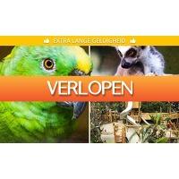 SocialDeal.nl: Entree voor Papegaaienpark Zoo Veldhoven
