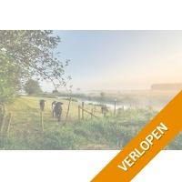 3, 4 of 5-daags verblijf in het gezellige Twente
