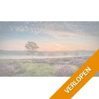 4 dagen 4*-Van der Valk Hotel bij Nijmegen
