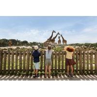 Bekijk de deal van Hoteldeal.nl 1: Weekend of midweek Vakantiepark Beekse Bergen