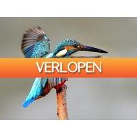 ZoWeg.nl: 3 dagen Biesbosch