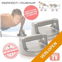 Perfect PushUp Original