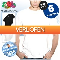 voorHEM.nl: 6 x Fruit of the Loom T-shirts