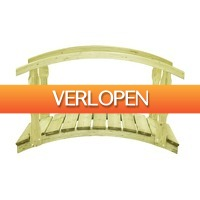 VidaXL.nl: vidaXL tuinbrug met leuning