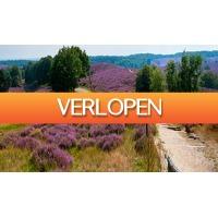 ActieVandeDag.nl 2: Kom tot rust op de Veluwe