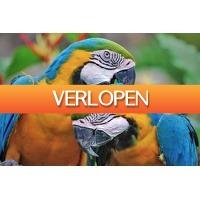 Tripper Tickets: Zoo Veldhoven