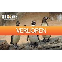SocialDeal.nl: Entree SEA LIFE Scheveningen