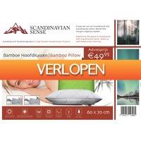 Voordeeldrogisterij.nl: Scandinavian Sense Bamboe Hoofdkussen - 60 x 70 cm