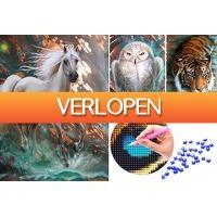 VoucherVandaag.nl: Compleet Diamond painting pakket