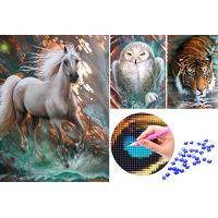 Bekijk de deal van VoucherVandaag.nl: Compleet Diamond painting pakket